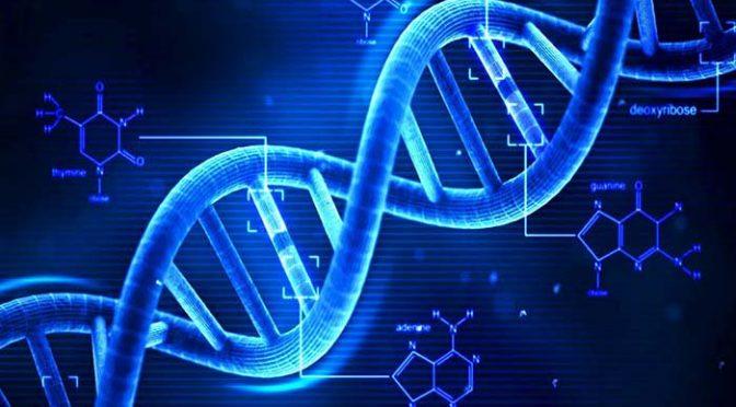ڈی این اے کیا ہوتا ہے؟
