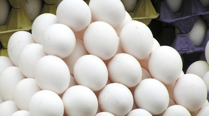مارکیٹ میں جعلی انڈے سپلائی ، کیسے اورکس مواد سے تیار کیے جارہے ہیں ؟ چونکا دینے وا لے انکشافات