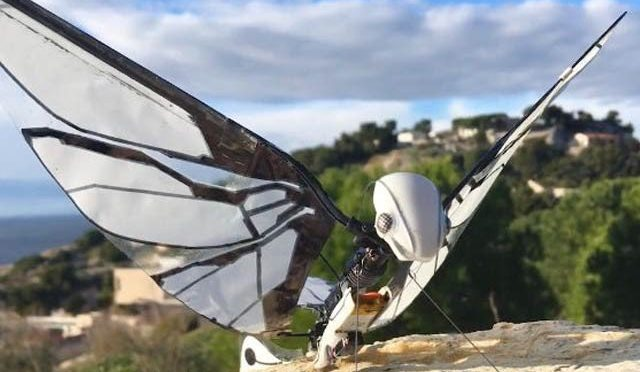 ڈرون طیارے کے بعد اب ڈرون مکھی تیار