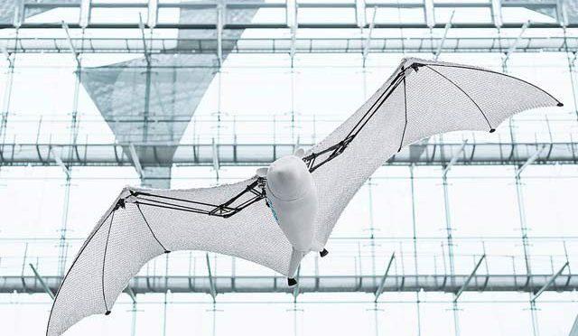 اصلی چمگادڑ کی طرح پرواز کرنے والی روبوٹ چمگادڑ