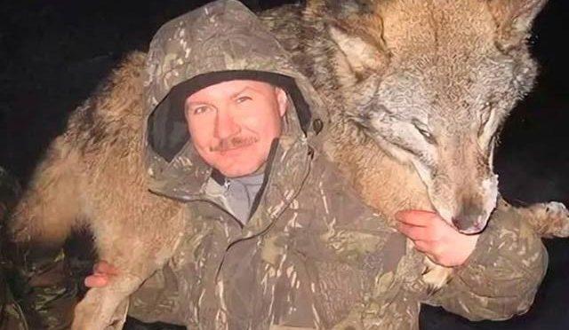 روس میں دہشت کی علامت بننے والا خون خوار بھیڑیا مارا گیا