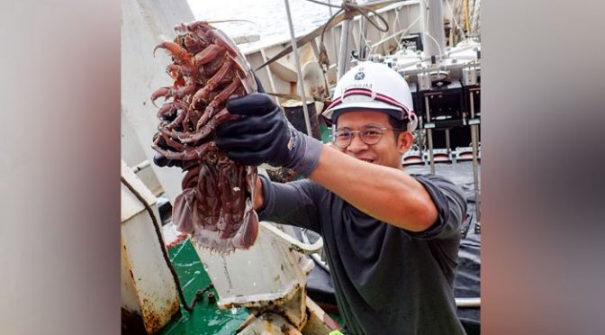 14 ٹانگوں والا انتہائی بڑا لال بیگ گہرے سمندر سے دریافت