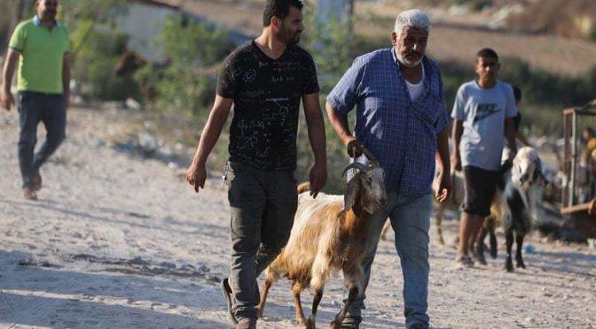 غزہ پر اسرائیلی بمباری کے بعد فلسطینیوں کی دکھ بھری عید